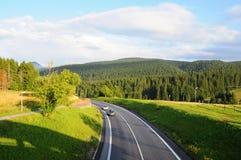 Τοπίο Tatra βουνών με τα πράσινα δασικά, μπλε σύννεφα και το λιβάδι Δρόμος στη μέση Στοκ φωτογραφία με δικαίωμα ελεύθερης χρήσης
