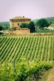 τοπίο tuscan χαρακτηριστικό Στοκ Εικόνες