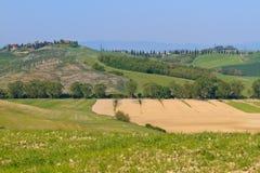 τοπίο tuscan χαρακτηριστικό Στοκ Φωτογραφίες