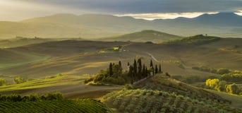 τοπίο tuscan Όμορφο Tuscan πρωί Στοκ Φωτογραφία