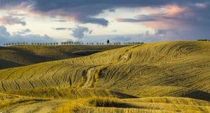 τοπίο tuscan Όμορφο Tuscan πρωί Στοκ φωτογραφία με δικαίωμα ελεύθερης χρήσης