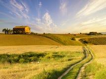 τοπίο tuscan Όμορφο Tuscan πρωί Στοκ εικόνες με δικαίωμα ελεύθερης χρήσης