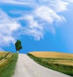 Τοπίο Tuskany με το μικρό δέντρο δρόμων και κυπαρισσιών Στοκ Εικόνες