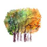 Τοπίο Watercolor με τα δέντρα αρχαίο watercolor εγγράφου ανασκόπησης σκοτεινό κίτρινο ελεύθερη απεικόνιση δικαιώματος