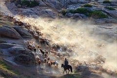 Τοπίο Xinjiang Στοκ Φωτογραφίες