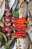Τοπικά τρόφιμα κρεμμυδιών ψαριών εγγράφου τσίλι Στοκ Εικόνες