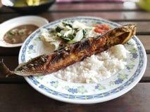 Τοπικά τρόφιμα Στοκ Εικόνα