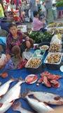 τοπική αγορά στοκ εικόνες με δικαίωμα ελεύθερης χρήσης