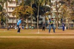 Τοπική αντιστοιχία γρύλων σε Mumbai Στοκ Εικόνες