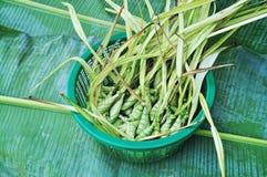 Τοπικό επιδόρπιο του souht Ταϊλάνδη Στοκ Εικόνες