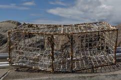 Τοπικό δοχείο ψαριών Στοκ φωτογραφία με δικαίωμα ελεύθερης χρήσης