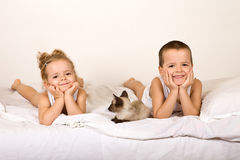 τοποθέτηση γατακιών κατσ& στοκ φωτογραφίες με δικαίωμα ελεύθερης χρήσης