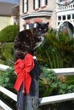 Τοποθέτηση γατών Χριστουγέννων, άσπρος φράκτης, κόκκινο τόξο, πεύκο 0 Στοκ εικόνες με δικαίωμα ελεύθερης χρήσης