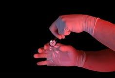 τοποθέτηση συσκευασίας χεριών γαντιών κουμπιών Στοκ φωτογραφίες με δικαίωμα ελεύθερης χρήσης