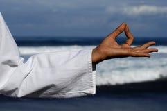 τοποθέτηση 3 zen Στοκ εικόνα με δικαίωμα ελεύθερης χρήσης