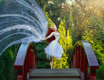 Τοποθέτηση Ballerina στο πάρκο στοκ εικόνες με δικαίωμα ελεύθερης χρήσης