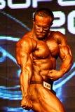 Τοποθέτηση Bodybuilder Στοκ Εικόνες