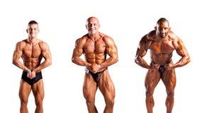 Τοποθέτηση Bodybuilders στοκ φωτογραφία με δικαίωμα ελεύθερης χρήσης