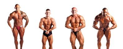 Τοποθέτηση Bodybuilders στοκ φωτογραφίες