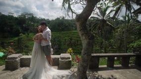 Τοποθέτηση Newlyweds στο πεζούλι ρυζιού στο Μπαλί Χέρια εκμετάλλευσης, αγκάλιασμα ρομαντικός γάμος φιλμ μικρού μήκους
