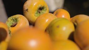 Τοποθέτηση persimmons στο bascket φιλμ μικρού μήκους