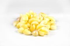 Τοποθετήστε έναν σωρό του σκόρδου σε ένα άσπρο υπόβαθρο Στοκ εικόνα με δικαίωμα ελεύθερης χρήσης
