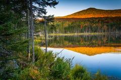 Τοποθετήστε την εξαπάτηση που απεικονίζει σε μια λίμνη στο άσπρο βουνό εθνικό Στοκ Εικόνες