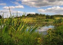 τοποθετήστε τις άγρια περιοχές Στοκ Φωτογραφίες