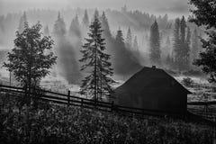 Τοποθετήστε το πλούσιο πρωί ο ήλιος Στοκ εικόνες με δικαίωμα ελεύθερης χρήσης