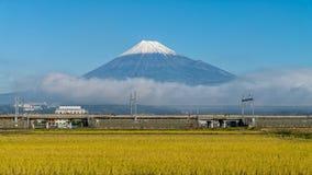 Τοποθετήστε το Φούτζι και τον τομέα ρυζιού Στοκ φωτογραφία με δικαίωμα ελεύθερης χρήσης