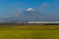 Τοποθετήστε το Φούτζι και το τραίνο σφαιρών Shinkansen Στοκ εικόνες με δικαίωμα ελεύθερης χρήσης