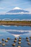 Τοποθετήστε το Φούτζι με τη γέφυρα Στοκ Εικόνες