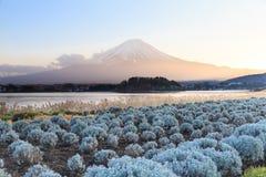 Τοποθετήστε το Φούτζι fujisan από τη λίμνη yamanaka στοκ εικόνες