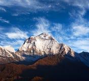 Τοποθετήστε Dhaulagiri, Νεπάλ Στοκ φωτογραφία με δικαίωμα ελεύθερης χρήσης