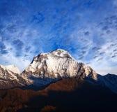 Τοποθετήστε Dhaulagiri, Νεπάλ Στοκ Εικόνες