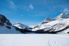 τοποθετημένο λίμνη εθνικό πάρκο του Καναδά τόξων Αλμπέρτα banff Στοκ Εικόνες