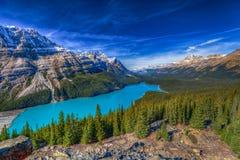 τοποθετημένο εθνικό peyto πάρκων Αλμπέρτα banff Καναδάς λίμνη Στοκ Εικόνες