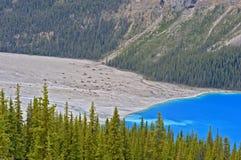 τοποθετημένο εθνικό peyto πάρκων Αλμπέρτα banff Καναδάς λίμνη Στοκ φωτογραφία με δικαίωμα ελεύθερης χρήσης