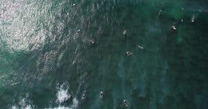 Τοπ άποψη από τον κηφήνα των surfers που κωπηλατούν για τη σύλληψη των κυμάτων κατά τη διάρκεια του σερφ στον Ινδικό Ωκεανό, 4k φιλμ μικρού μήκους