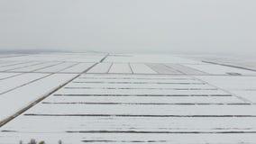 Τοπ άποψη ενός οργωμένου τομέα το χειμώνα Ένας τομέας του σίτου στο χιόνι απόθεμα βίντεο