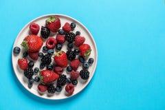 Τοπ άποψη ενός πιάτου με την ποικιλία των δασικών φρούτων, μούρα στο α στοκ φωτογραφία με δικαίωμα ελεύθερης χρήσης