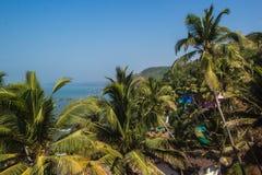 Τοπ άποψη παραλιών Arambol, φοίνικες, παραλία και αραβική θάλασσα, Goa, Ινδία Στοκ εικόνες με δικαίωμα ελεύθερης χρήσης
