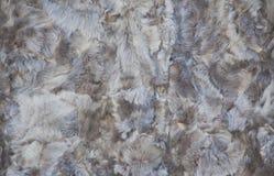 Τοπ άποψη σχετικά με τη σύσταση της καφετιάς γούνας για το υπόβαθρο Στοκ εικόνες με δικαίωμα ελεύθερης χρήσης