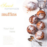 Τοπ άποψη σχετικά με muffins ζάχαρης πέρα από το λευκό Στοκ φωτογραφία με δικαίωμα ελεύθερης χρήσης