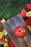 Τοπ άποψη της κόκκινης Apple με το υπόβαθρο φθινοπώρου Στοκ Εικόνες