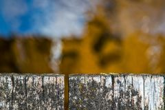 Τοπ άποψη της ξεπερασμένης ξύλινης κινηματογράφησης σε πρώτο πλάνο γεφυρών επάνω από το δασικό ρεύμα Στοκ εικόνες με δικαίωμα ελεύθερης χρήσης