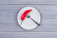 Τοπ άποψη του άσπρου πιάτου με το πιπέρι τσίλι Στοκ φωτογραφίες με δικαίωμα ελεύθερης χρήσης
