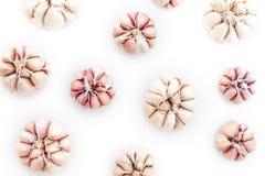Τοπ άποψη του βολβού σκόρδου ως υπόβαθρο σχεδίων στο λευκό Στοκ φωτογραφίες με δικαίωμα ελεύθερης χρήσης