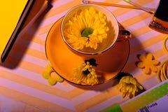 Τοπ άποψη του κίτρινου φλυτζανιού με το κίτρινο λουλούδι της Daisy στοκ φωτογραφίες με δικαίωμα ελεύθερης χρήσης