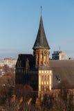 Τοπ άποψη του καθεδρικού ναού Konigsberg σε Kaliningrad Κεντρικές άνοδοι πύργων ρολογιών στα δέντρα Στοκ Εικόνες